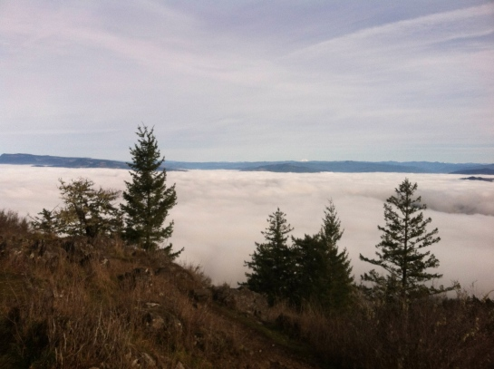 Above the fog and looking out towards the Three Sisters.